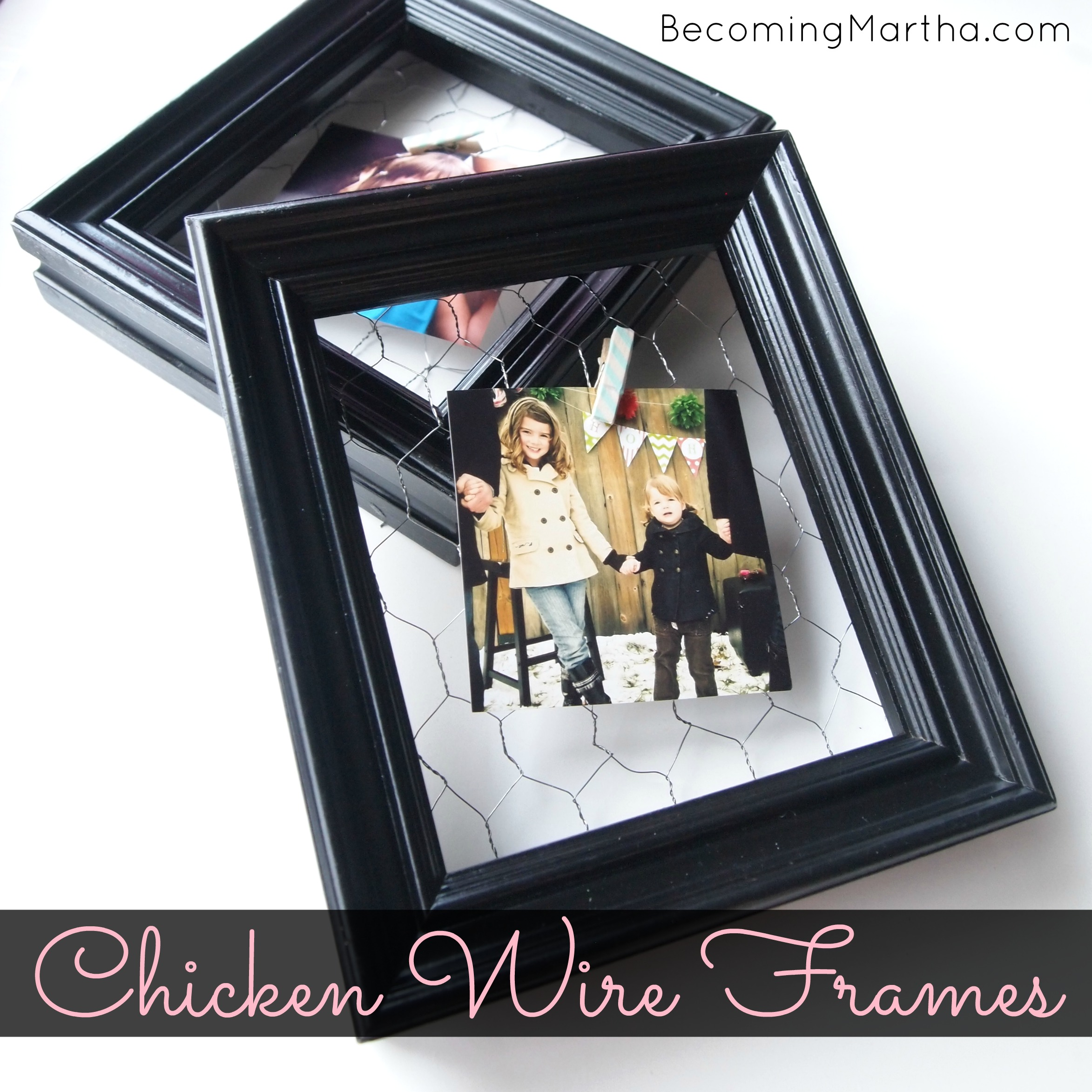 Quick and Simple Chicken Wire Frames
