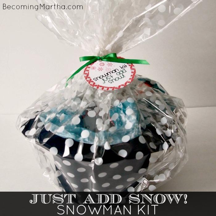 Just Add Snow – A Snowman Kit