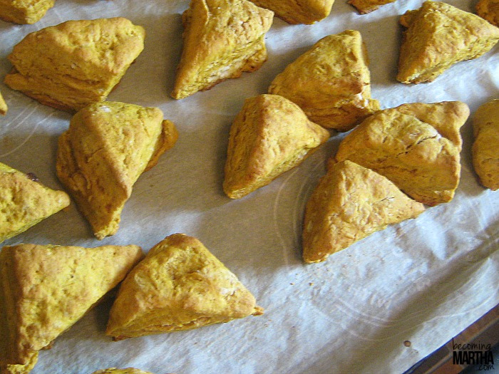 mini pumpkin scones 3