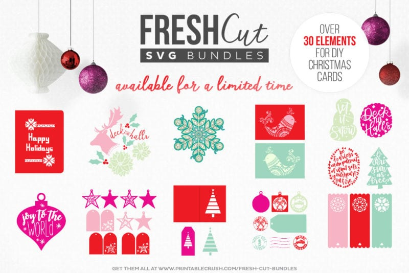 Looking for a great Christmas Card SVG? This Glitter & Sequin Shaker Card (with matching gift tag) is included in this months Fresh Cuts SVG Bundle!